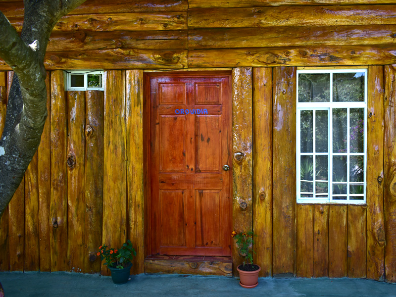 Cabaña rustica de madera en El Pital
